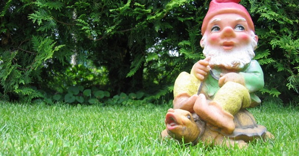 8 Possibly Illegal Things in Your Front Yard   NakedLaw by