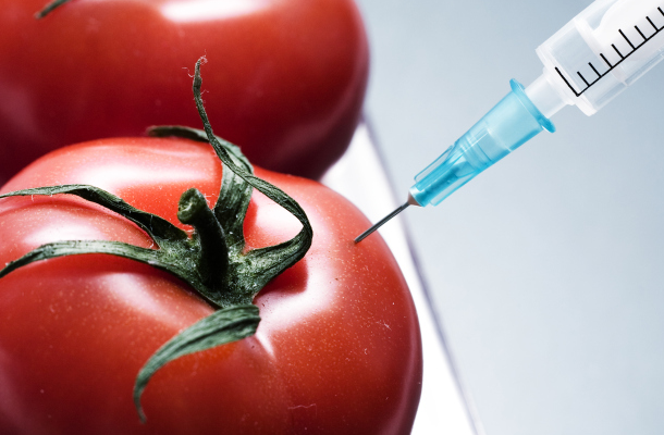 What Does GMO Labeling Mean For You?